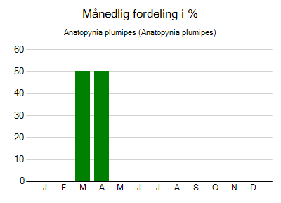 Anatopynia plumipes - månedlig fordeling