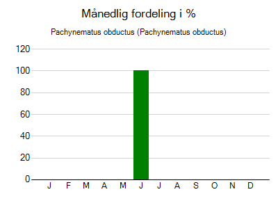 Pachynematus obductus - månedlig fordeling