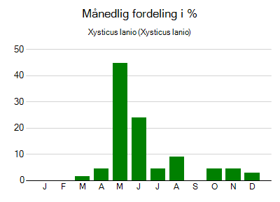 Xysticus lanio - månedlig fordeling