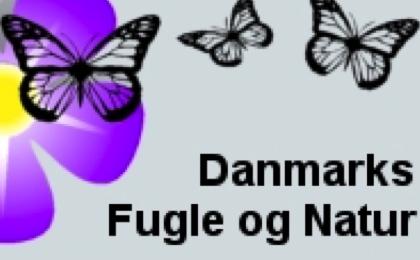 natur og teknik dating dk kontakt